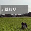 owner_5.jpg